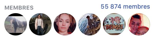 """Chasse : partenariat publicitaire """"Chasse"""" avec facebook"""