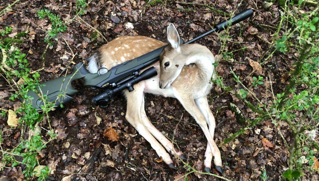 Bien choisir une carabine si vous chassez exclusivement en battue